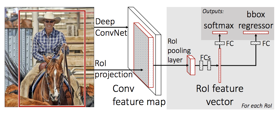 TorchVision Object Detection Finetuning Tutorial — PyTorch
